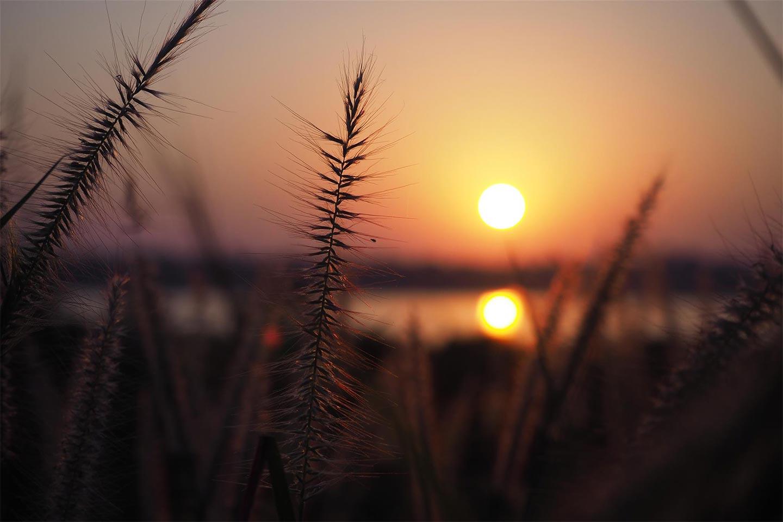 L'energia solare è una delle principali fonti di energia rinnovabile prodotte in Italia.