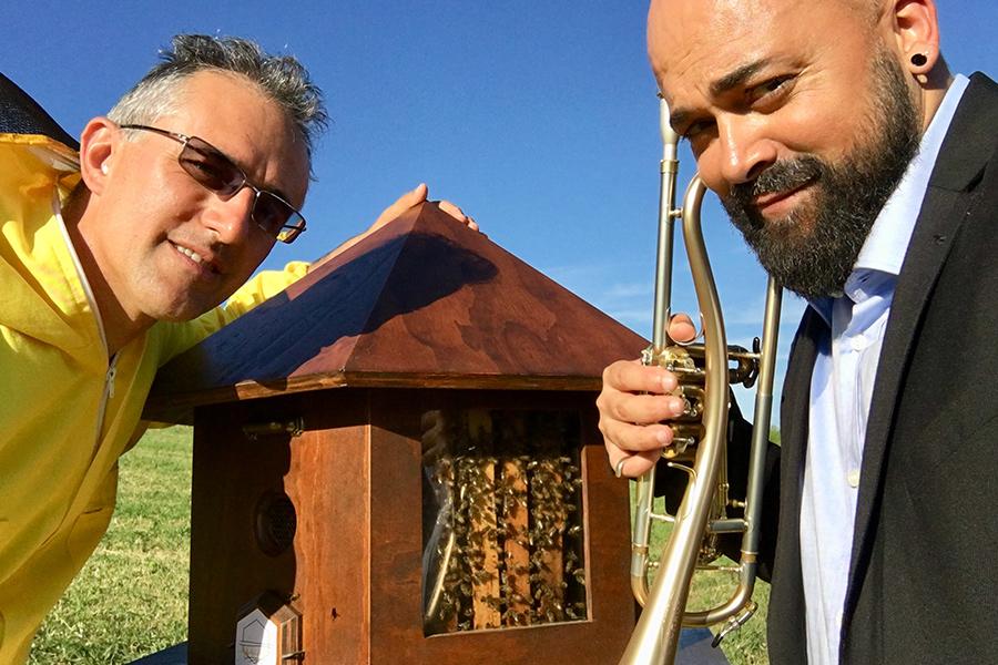 L'arnia speciale per registrare il ronzio dell'ape