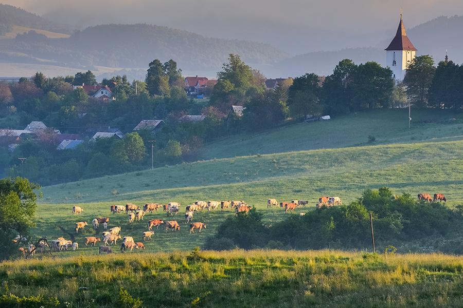 Ecovillaggi la scelta perfetta per chi ama le vacanze ecologiche